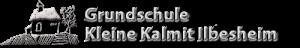 GS Ilbesheim